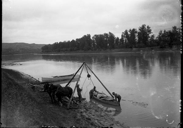 Photo d'époque en noir et blanc. À l'aide d'une poulie, trois hommes chargent deux gros paquets dans une petite chaloupe sur la berge d'une rivière. Deux chevaux attendent sur la rive.