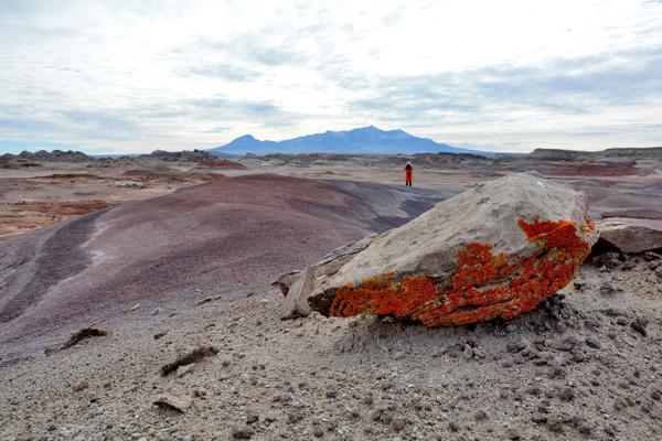 Vue du désert de l'Utah avec une roche recouverte de lichen à l'avant-plan et un membre de l'équipage qui se tient derrière.