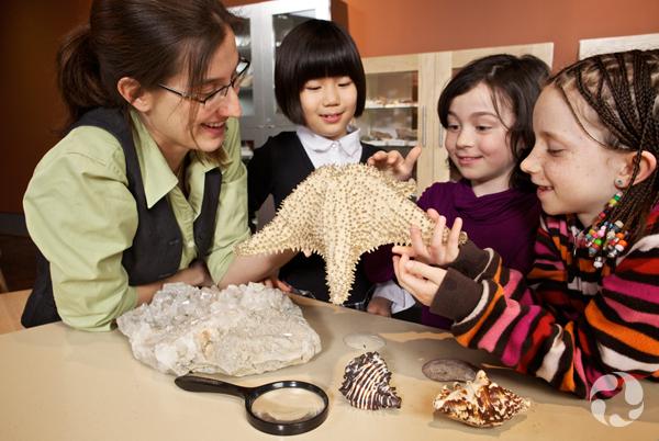 Une femme et trois fillettes regardent un spécimen d'étoile de mer.