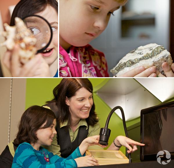 Collage de photos : une fillette tient un minéral. Une autre observe un coquillage avec une loupe. Une femme et une enfant regardent les détails d'un spécimen que révèle un microscope.