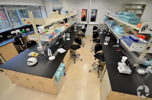 Plan large d'un laboratoire.