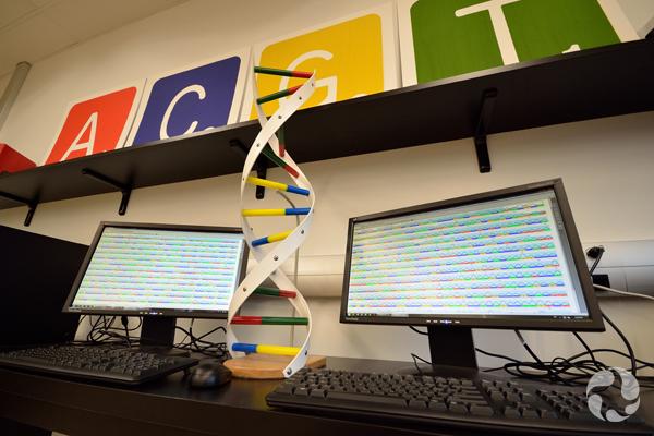 Deux écrans d'ordinateur remplis de codes.