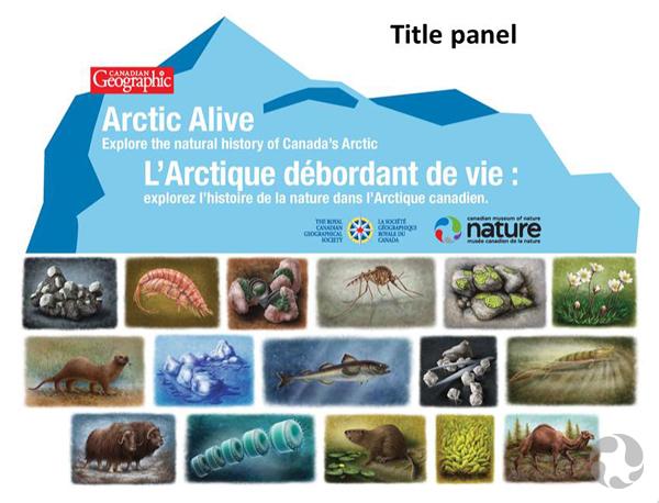 Le panneau du titre de la carte, avec les illustrations de 16 spécimens de plantes, d'animaux, de fossiles et de minéraux.