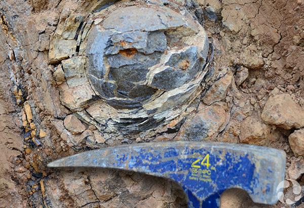 Plan rapproché d'une forme ronde dans une roche, au-dessus d'un marteau de géologue.