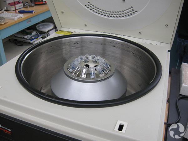 Un coup d'oeil dans la centrifugeuse.