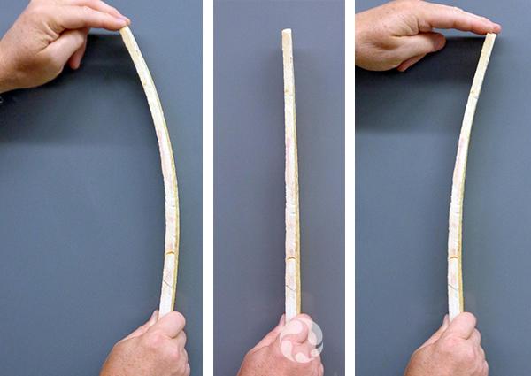 Collage: une bande d'itacolumite droite, puis courbée dans deux sens différents.