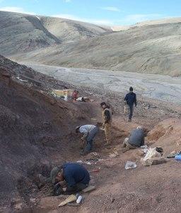 Vue du site de fouille où a été découvert Tiktaalik sur l'île d'Ellesmere.