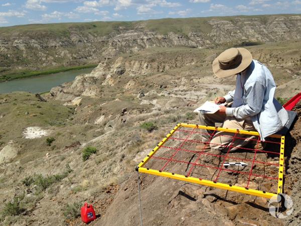 Jordan Mallon assis sur le sol en train de cartographier le lit d'ossements.