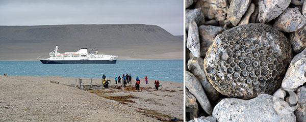 Collage : Groupe de personnes près de ruines, un bateau est en arrière-plan et plan rapproché de fossiles.