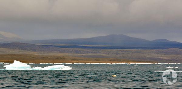 Glaces flottant sur un vaste cours d'eau devant un paysage dénudé et montagneux.