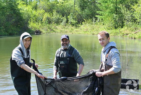 Trois hommes tiennent un grand filet dans un étang.