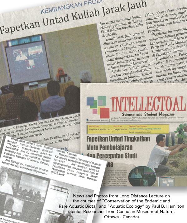 Un collage de plusieurs articles de journaux.