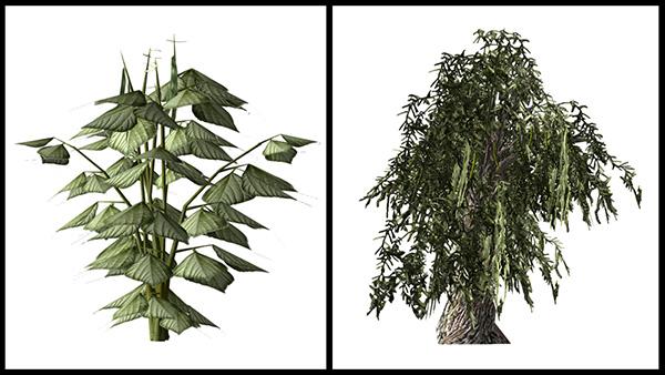 Images de plantes d'un jeu vidéo.