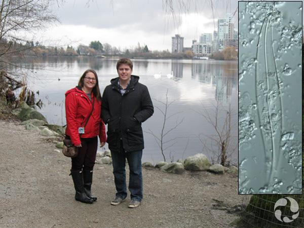 Collage : Deux adultes devant un cours d'eau, et une diatomée.