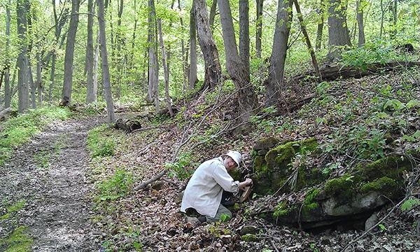 Une femme dans une forêt s'accroupit pour examiner de près un affleurement rocheux.