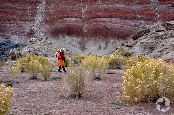 Un homme en combinaison spatiale marche dans un désert parsemé de hautes plantes.