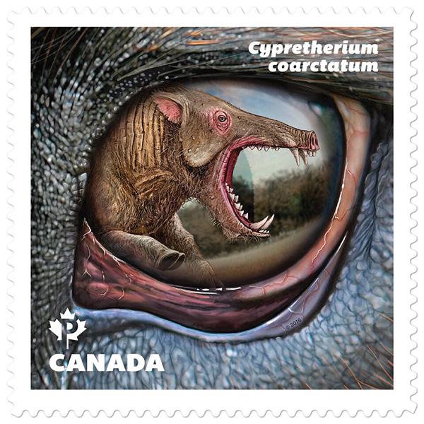 Le timbre représentant Cypretherium coarctatum.