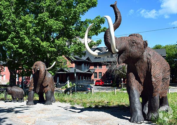 Trois sculptures de mammouth de Sibérie dans un parc.