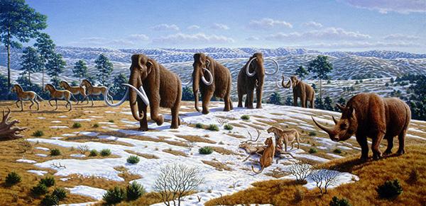 Une représentation artistique d'animaux dans une steppe à mammouths.