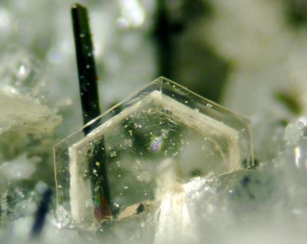 Vue agrandie d'un cristal de arisite-(Ce).