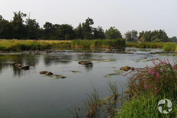 Vue de la rivière Rideau.