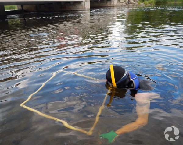 Un plongeur examine la rivière à travers un grand cadre qu'il tient dans l'eau.