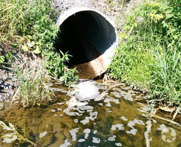 Le tuyau d'un ponceau laissant passer un filet d'eau.