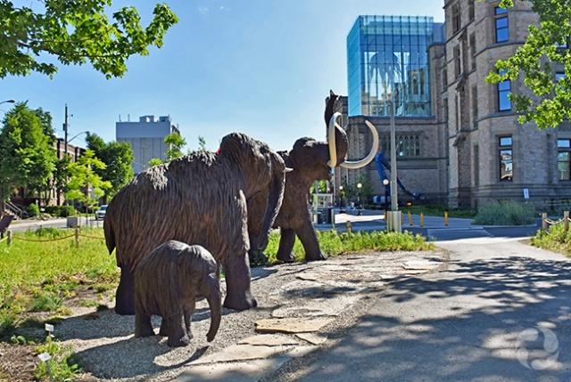 Trois sculptures de mammouths laineux sur les terrains du Musée.