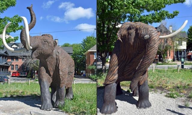 Deux images des sculptures des mammouths mâle et femelle.