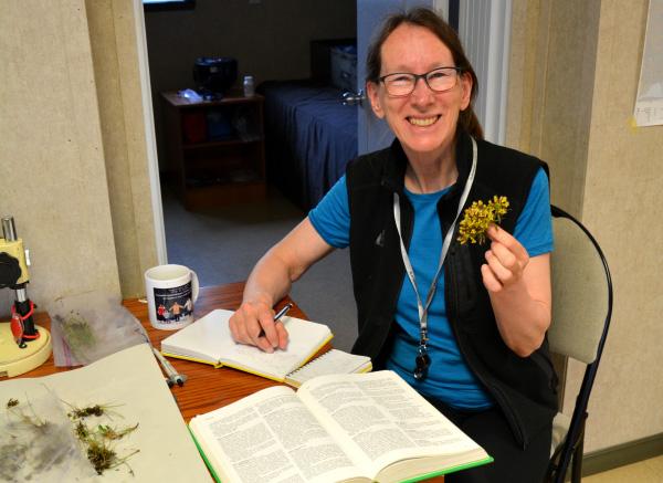 Lynn Gillespie tient une plante qu'elle a collectée d'une main tout en se penchant vers une table où se trouvent des documents.