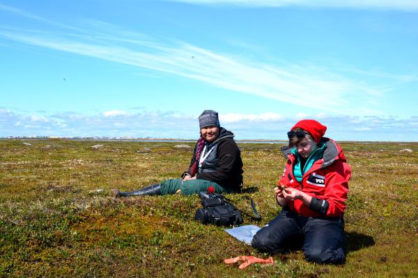 Deux femmes assises en train de collecter des plantes de la toundra.