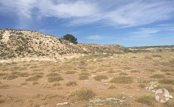 Paysage semi-désertique.