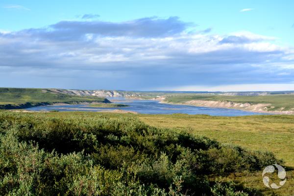 Une rivière serpente entre des collines, dans la toundra en été.