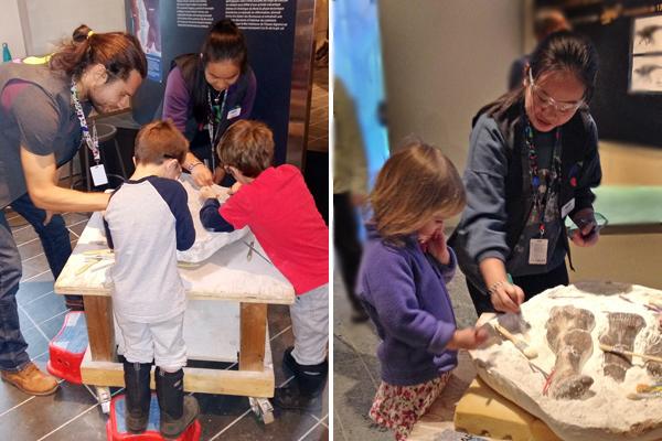 À gauche : Un homme et une femme aident des enfants à une station d'activités au Musée. à droite : une jeune femme supervise des enfants en train de nettoyer des fossiles de dinosaure à la station d'activités du Musée.