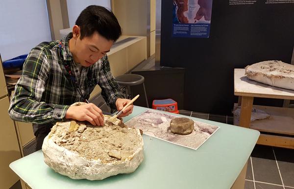Un homme, assis à une table de travail, nettoie un spécimen de fossile.