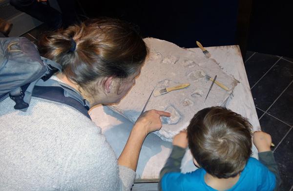 Une femme et un garçon examinent des fossiles de dinosaure à une station d'activités du Musée.