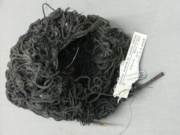 Un nid d'oiseau fabriqué de brins de vadrouille et d'un peu de crin de cheval. Les brins de vadrouille sont noircis par la poussière de charbon.