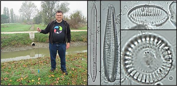 Un collage montrant l'auteur et plusieurs spécimens de phytoplancton.