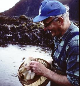 Un homme en bottes-pantalon dans une cuvette de marée examine le contenu de son épuisette.