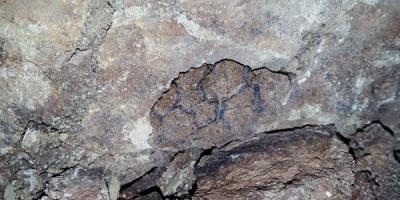 Photographie d'une empreinte de peau fossile.