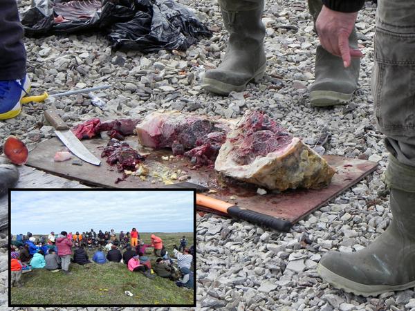 Photographie de mets inuits traditionnels et, en médaillon, les habitants du village réunis.