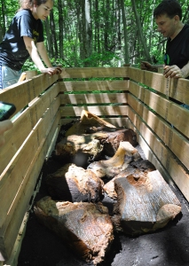 Morceaux de baleine dans un contenant de compostage.