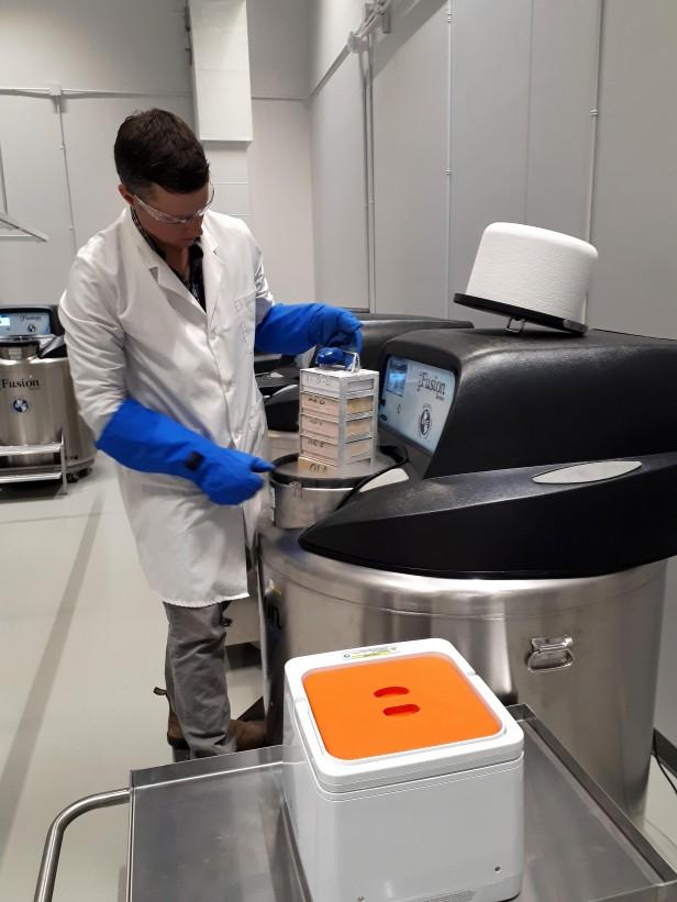 Un homme portant un sarrau de laboratoire et de longs gants bleus tire un support rectangulaire plein de boîtes d'un gros congélateur noir et gris d'où s'échappe de la vapeur. D'autres congélateurs semblables s'alignent derrière.