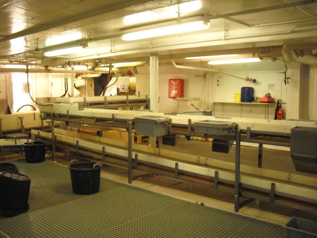Un espace de style industriel dans la coque d'un navire, sous un vif éclairage fluorescent.