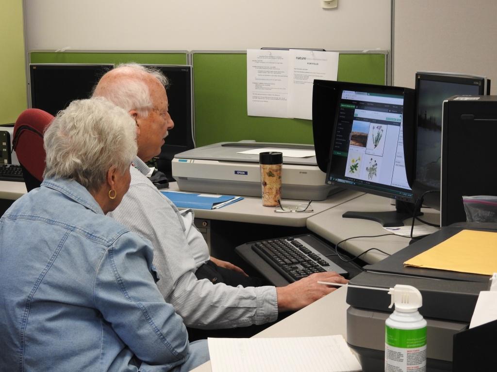 Deux personnes âgées assises devant un ordinateur de bureau travaillent sur une base de données.