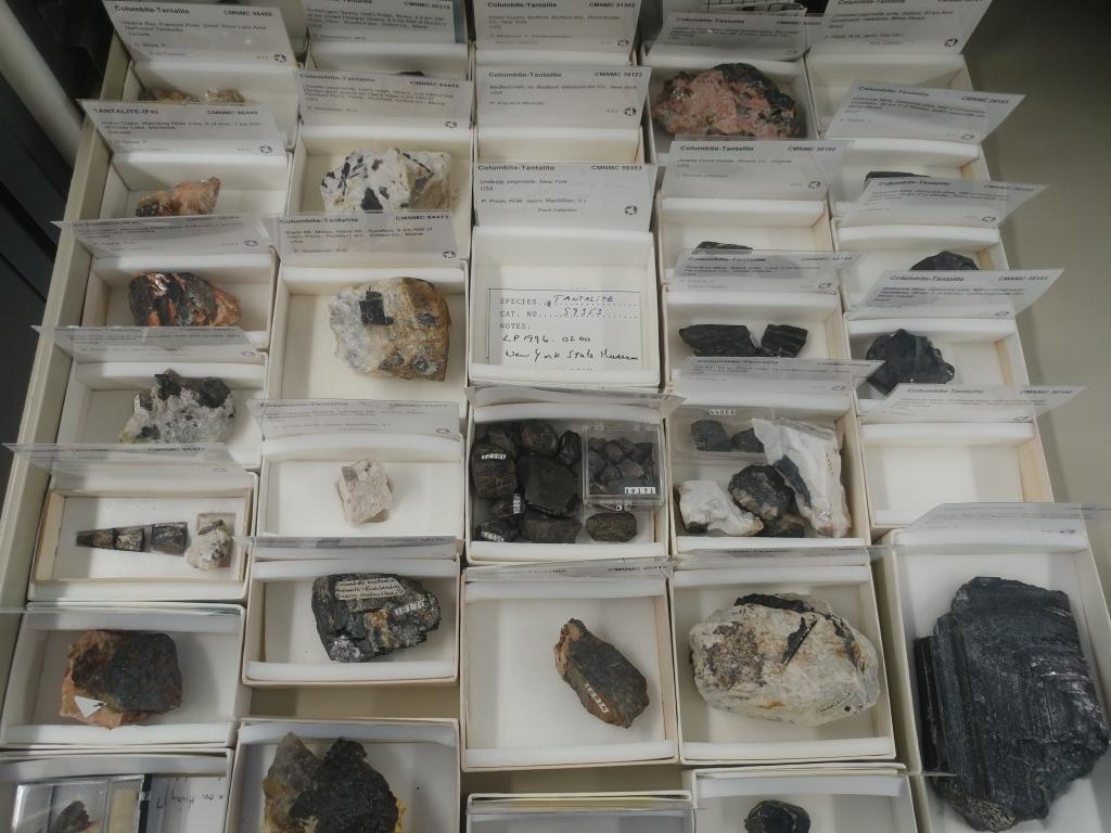 Un tiroir de rangement contenant vingt spécimens noirs de columbite-tantalite, chacun dans sa boîte de carton.