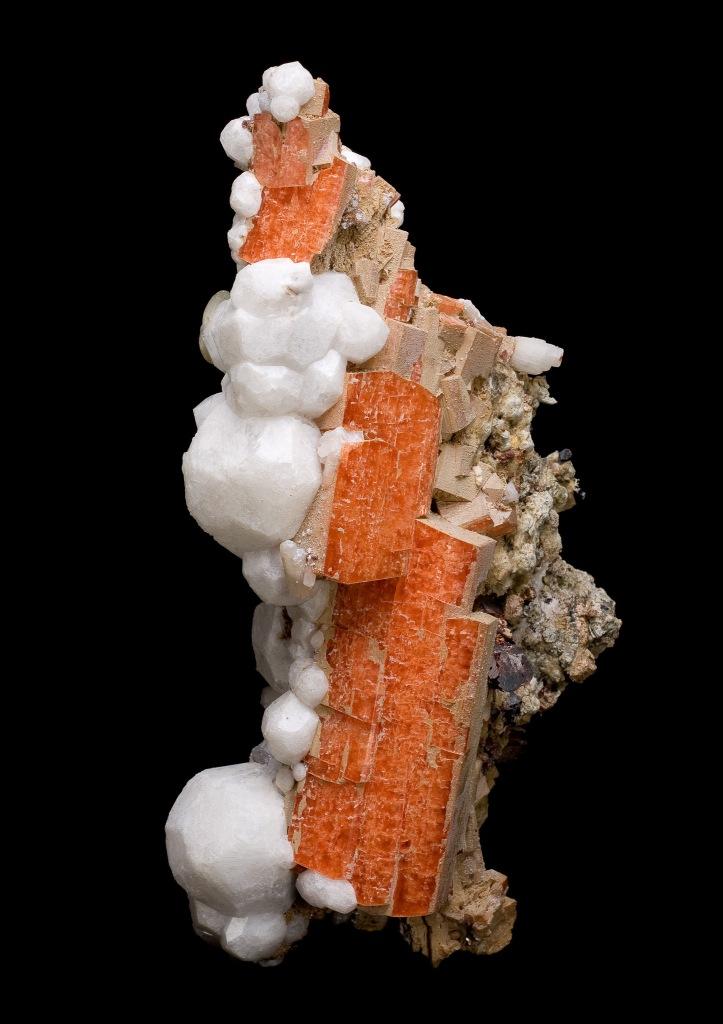 Un échantillon orange de sérandite, orienté à la verticale, parsemé de cristaux blancs d'analcime.