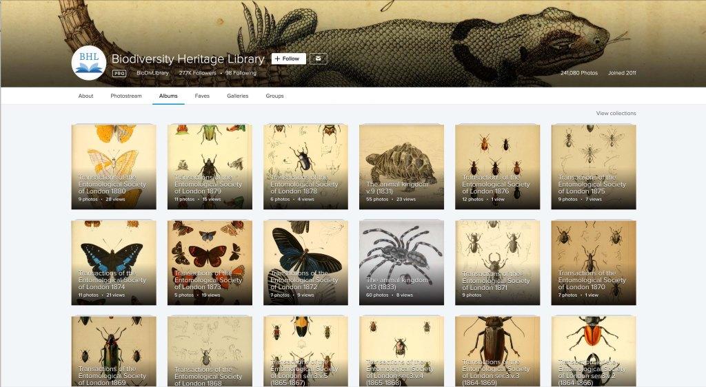 Une image d'un site Web.