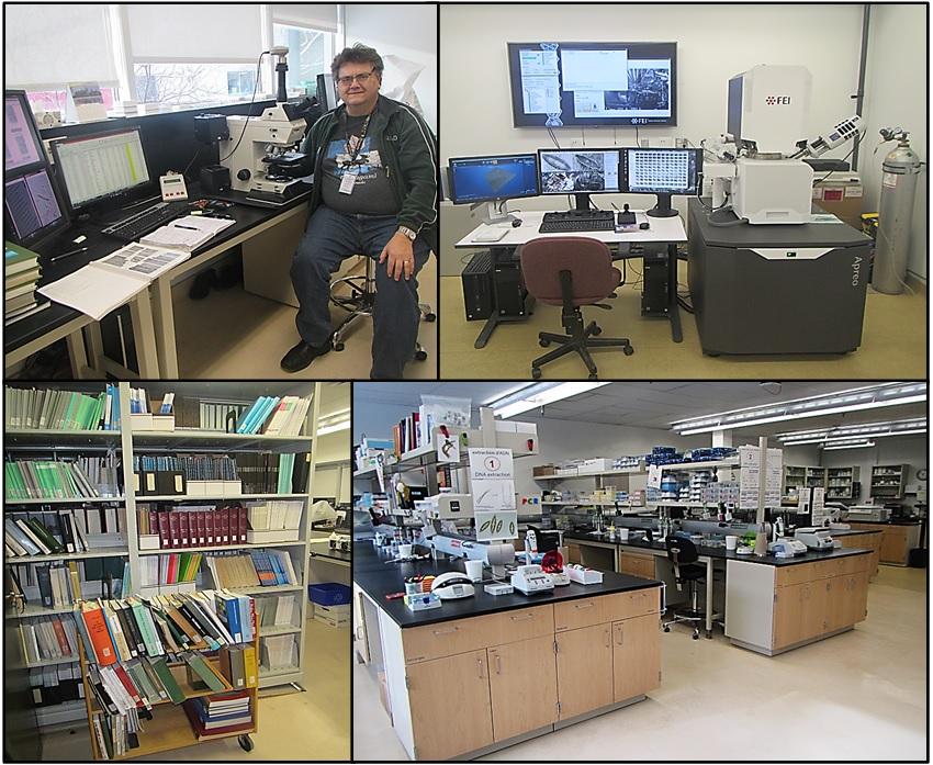 Quatre images. En haut à gauche, l'auteur est assis devant un microscope, des écrans et des livres sur les diatomées ouverts sur un bureau. En haut à droite, un microscope électronique à balayage et plusieurs grands écrans. En bas à droite, un laboratoire de biologie moléculaire : divers types d'équipement et de fournitures sur les comptoirs et dans les étagères. En bas à gauche, un rayon de bibliothèque rempli de livres sur les diatomées.